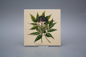 Fliese 15x15cm Herbs BEIGE