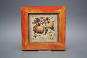 Bild 20cm Fruits eCMB